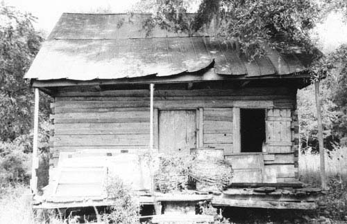 the lives of slaves on plantations Plantations had been used with great effect long before the europeans settled in the americas sugar cane plantations, for example, had thrived around the.